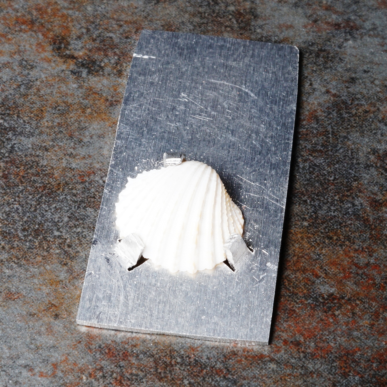 Claw setting shell on an aluminium pendant